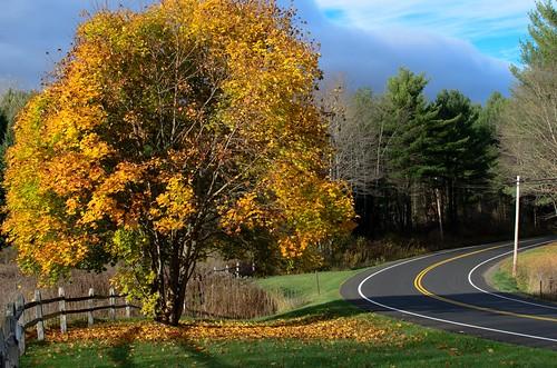 autumn landscape columbiacountyny handhollow dajewski gdajewski