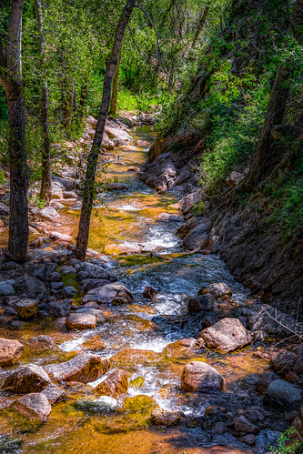 plant tree nature water rock stone creek forest landscape outside waterfall stream outdoor serene hdr sevenfalls portraitorientation