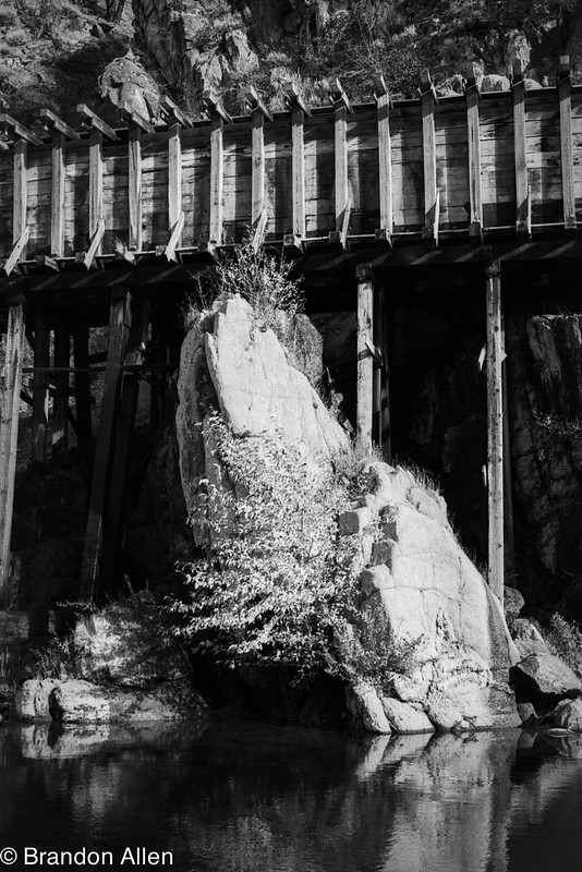 Rock Tree and Flume
