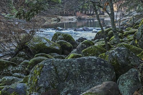 winter rivers yosemitenationalpark yosemitevalley canonphotography californialandscapes californiamountainranges