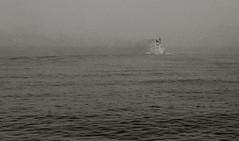 Unknown steamer.