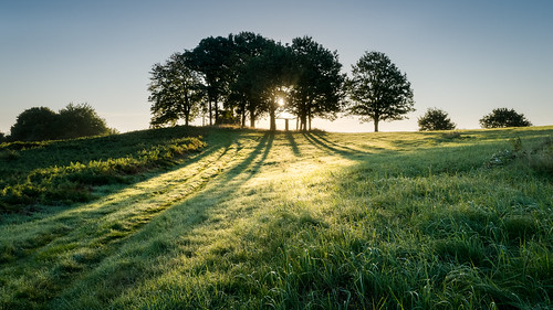 bringstycommon autumn dawn morning sunrise sunshine trees sun grass green blue sky rays trig point dew shadows malvernhills herefordshire