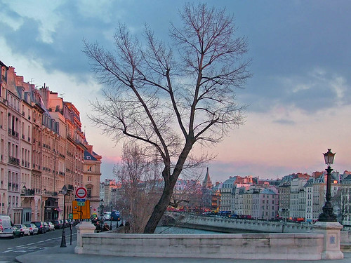 Rita Crane Photography: Paris / Quai des Orfevres / Ile de la Cite' / tree / people / lamppost / evening / street / Quai des Orfevres from the Pont Neuf, Paris | by Rita Crane Photography