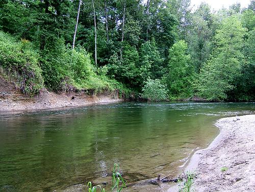 river washington greenriver saywa experiencewa auburnwa shesnuckinfuts