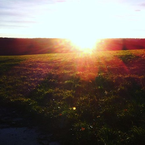 sunrise trailrunning uploaded:by=flickstagram stravarun suuntorun annaeule instagram:venuename=kerstlingerc3b6derfeld instagram:venue=314331597 instagram:photo=11342854555470579842143709496