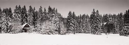 Winterland | by Sebastian Dziuba