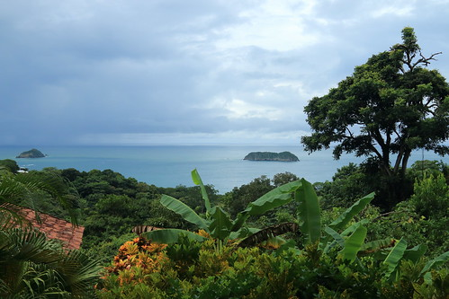 ocean trees sea latinamerica nature water forest nationalpark rainforest costarica hiking wildlife pacificocean jungle naturalbeauty centralamerica manuelantonio