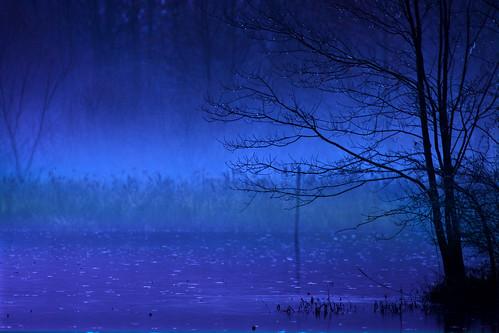 kh0831 thegreatswamp xplr 112 thousandplus nj rain rainyday
