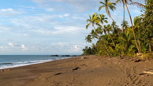 2014-12-01_0323_CostaRica_DrakeBay | by SuperTobi007