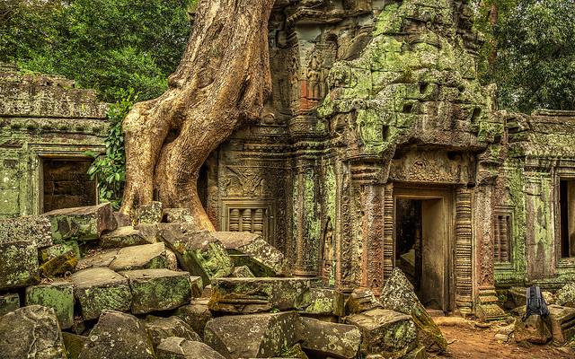 Angkor Wat_Ta Prohm