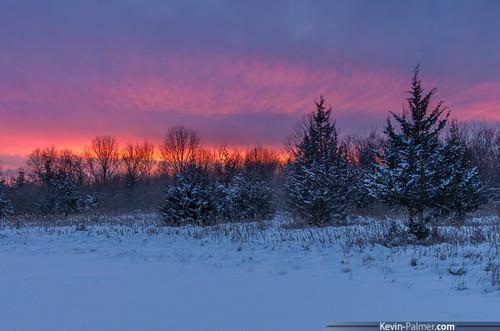 statepark pink trees winter sunset red orange white snow cold ice illinois colorful purple january icy snowfall frigid utica starvedrock kevinpalmer tamron1750mmf28 pentaxk5