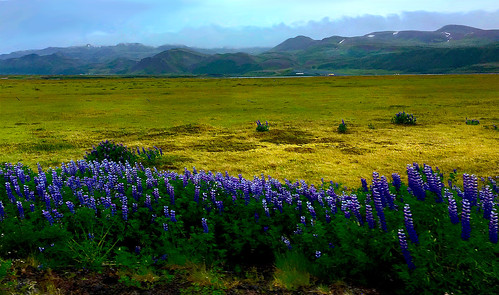 1146 Northern Iceland, color persists... | by TropicB