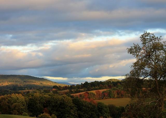 NY Fall Landscape