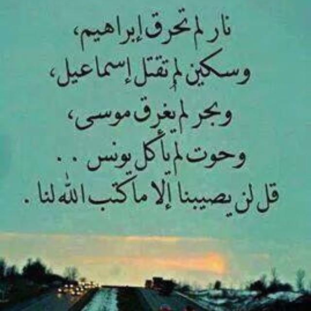 قل لن يصيبنا إلا ما كتب الله لنا Bashir Ibrahim Flickr