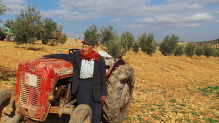 New olive oil facility brings jobs and hope to Turkish host community | by UNDP in Europe and Central Asia