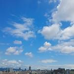 #青空 #そら #空#カメラ女子 #カメラ男子 #ファインダー越しの私の世界 #ファインダー越しの僕の世界 #写真好きな人と繋がりたい #東京カメラ部#photograph #japan #osaka #team_jp_#team_jp_西