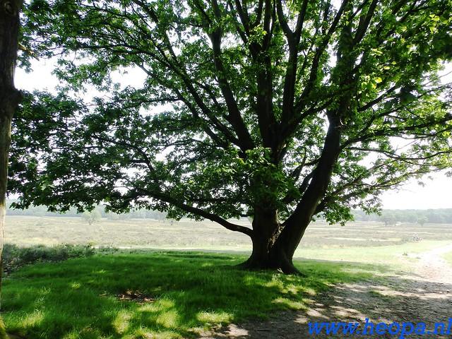 2016-06-04  KIWANIS Paleizen wandeltocht 36 Km  (104)
