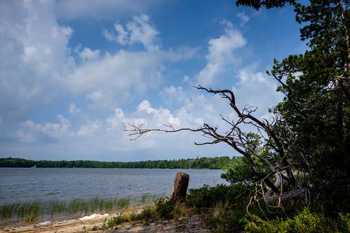 trees sand landscape fontlake forest woods water mi sky nature lake branches beaverisland clouds michigan unitedstates us