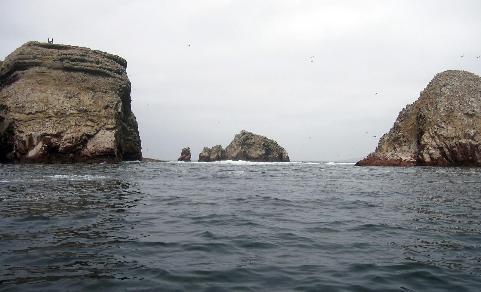 Islas Ballestas 86