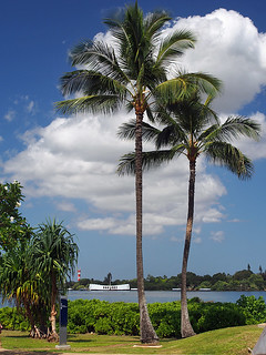 Pearl Harbor -Joe 02 | by KathyCat102