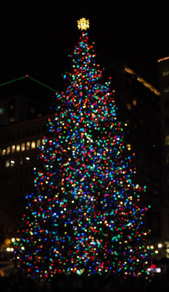 Portland Christmas Tree.Portland Christmas Tree Lighting Portland Oregon