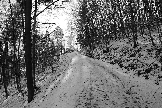 ODENWALD WINTER TRAIL B+W