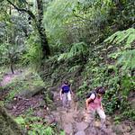09 Viajefilos en Panama, Valle de Anton 35