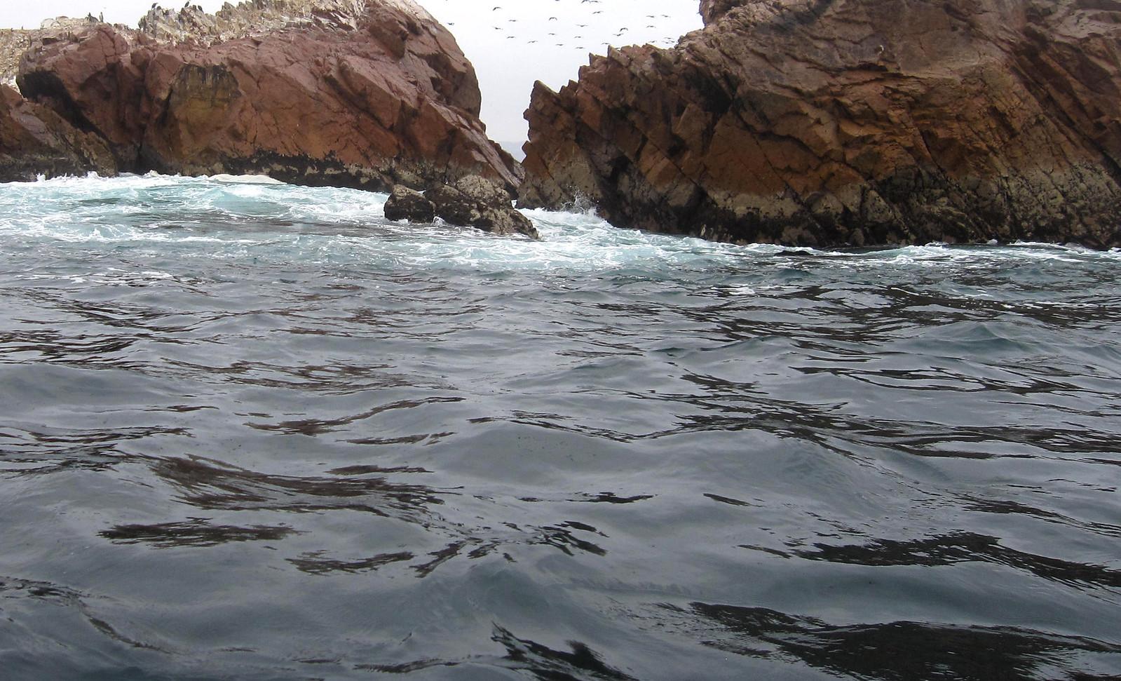 Islas Ballestas 106