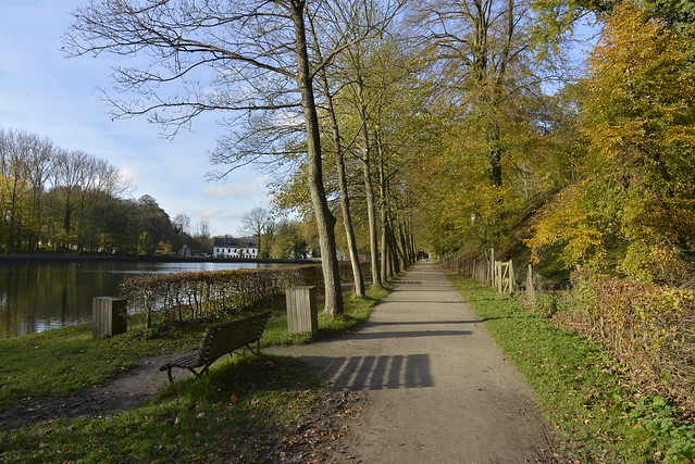Chemin longeant la berge opposée de l'étang du Moulin