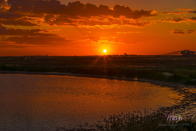 Wyndham Sunset the January first 2015 DSC_5105