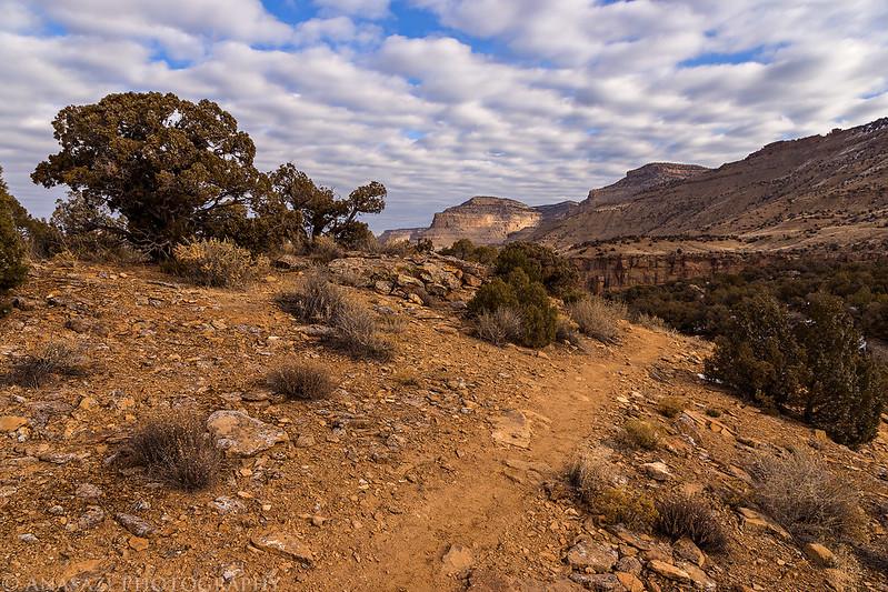 Palisade Rim Trail