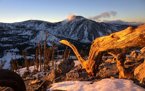 wood winter sunset mountain snow mountains gold golden raw outdoor nevada explore hdr mtrose 3xp photomatix fav500 mtroseskitahoe nex6 selp1650