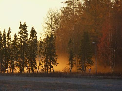 morning autumn sunrise suomi finland lumix helsinki panasonic syksy aamu auringonnousu tuomarinkylä dmctzx22