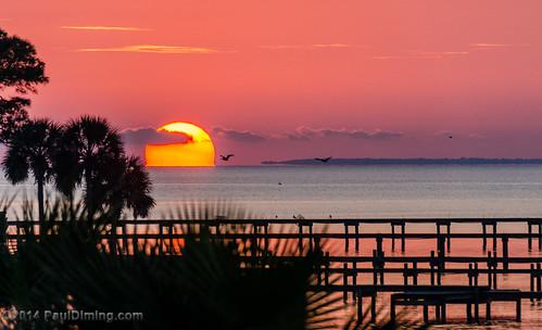 sunset fall landscape unitedstates florida sunsets bienvenue dailyphoto eastpoint stgeorgeisland saintgeorgeisland franklincounty floridapanhandle stgeorgeislandflorida d7000 franklincountyflorida saintgeorgeislandflorida pauldiming