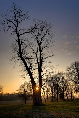 park autumn tree fall vertical landscape kentucky ky louisville jeffersontown vettiner explorekentucky