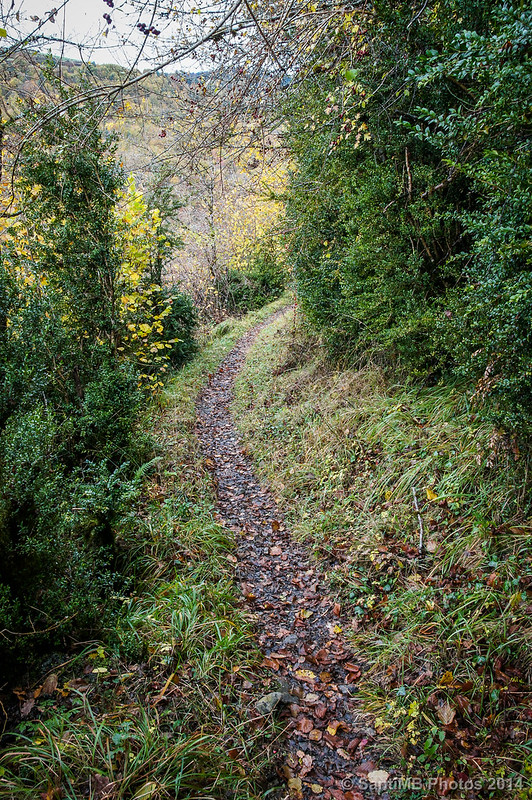 El viejo camino a Irati