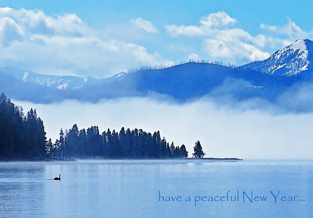 have a peaceful New Year...