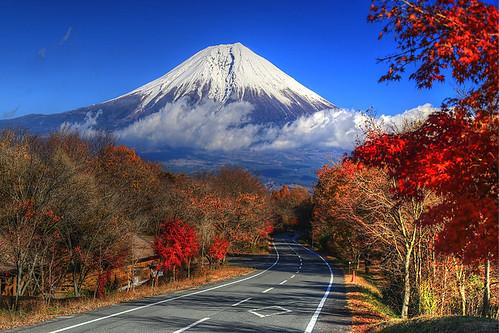 road autumn japan volcano fuji tanuki 日本 shizuoka japon 富士山 volcan fujinomiya 静岡県 田貫湖