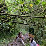 01 Viajfilos en Panama. Sendero Quetzal 26