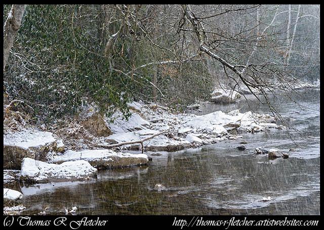 Williams River Snow