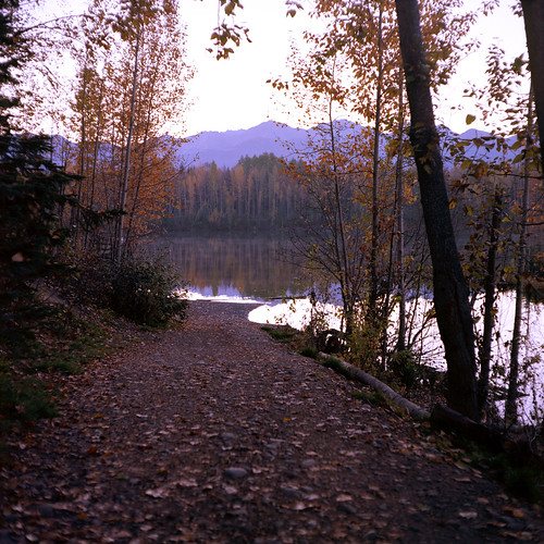 camera morning travel trees vacation lake mountains 120 6x6 mamiya tlr film nature water leaves alaska analog america sunrise vintage reflections square lens landscape prime reflex university natural kodak body branches magic north scenic ak twin iso anchorage handheld epson medium format 100 asa f28 80mm ektar c330 v500 sekor