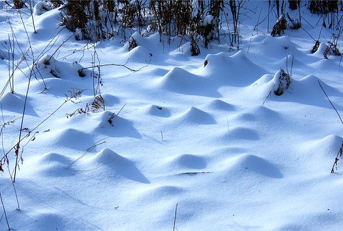 Snow  Dunes | by Stanley Zimny (Thank You for 42 Million views)