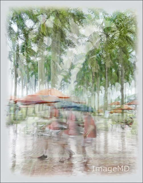 Gables Rain
