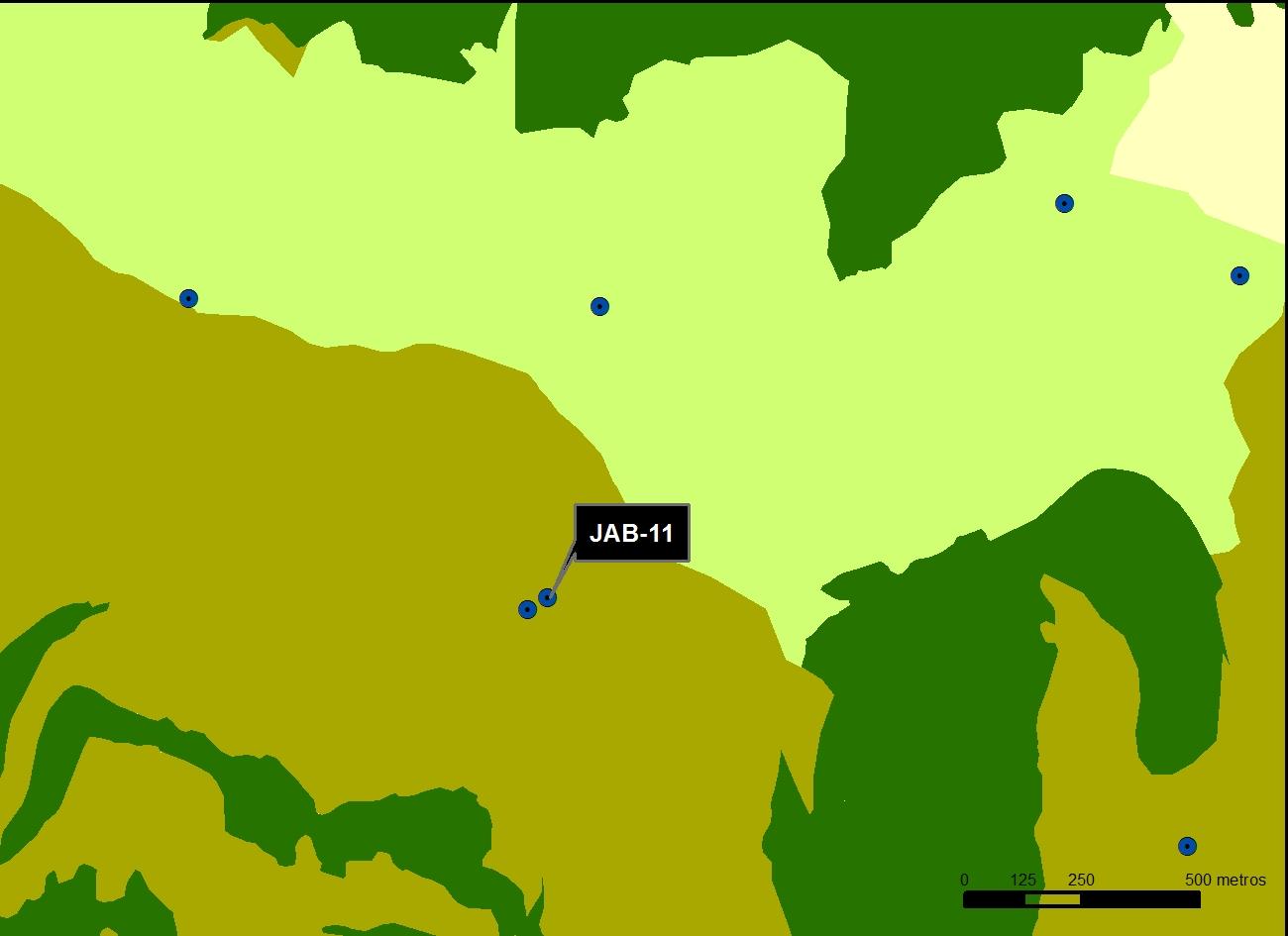 JAB_11_M.V.LOZANO_SALTILLO_MAP.VEG