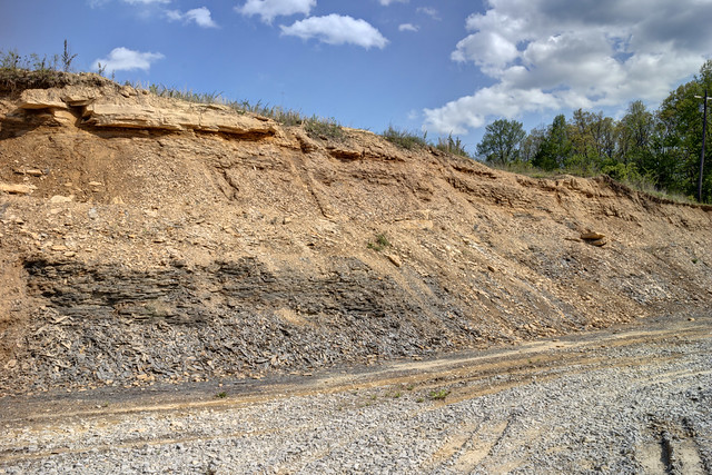 Dorton shale outcrop, Morgan County, Tennessee