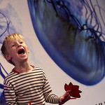 Boy giving it laldy in Nick Sharratt | Lots of silliness unfolding at Nick Sharratt's Book Festival event © Helen Jones