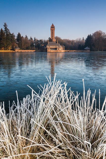 Park De Hoge Veluwe in Winter