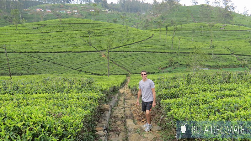 Haputale en Sri Lanka