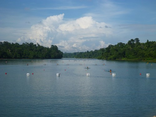 MacRitchie Reservoir - 129 | by Eustaquio Santimano