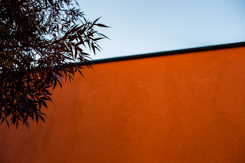 street orange france tree line mur ain oyonnax feuillage